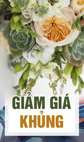 mua hoa giá rẻ tại Nam Định